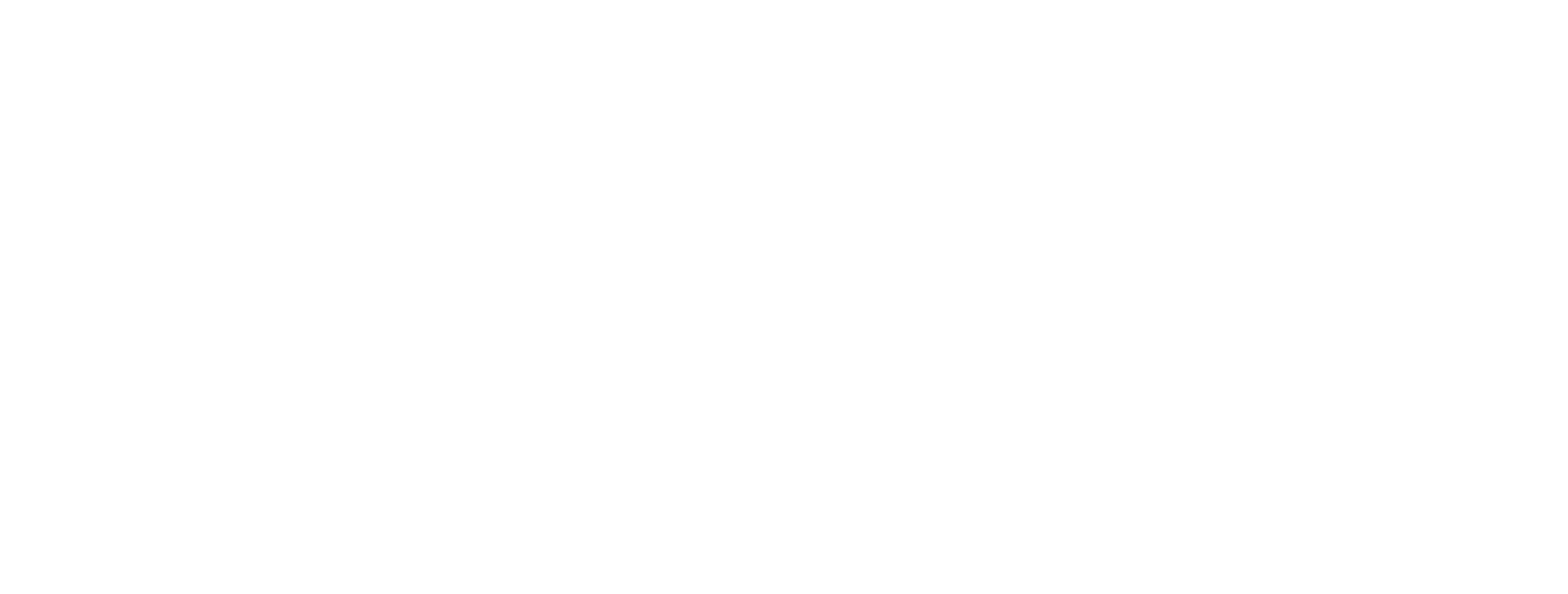 velvet goldmine logo bianco